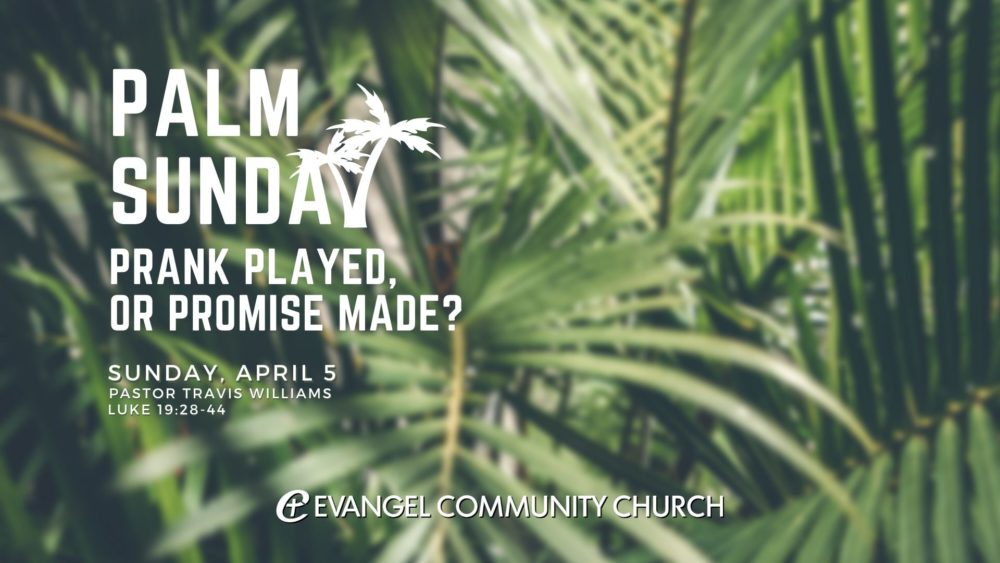 Palm Sunday: Prank played, or promise made? Image